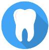 Zahnbehandlung in der Hundekrankenversicherung