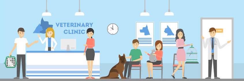Tierarztkosten für Hunde versichern