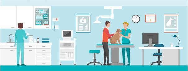 Tierarztkosten versichern